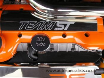 AS Stainless Fuel Injector Cover for MK2 Focus ST